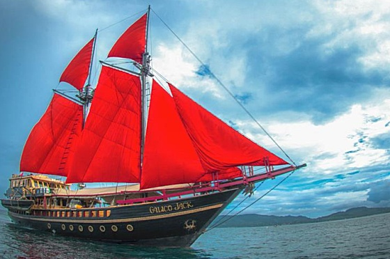 Liveaboard Indonesia Calico Jack