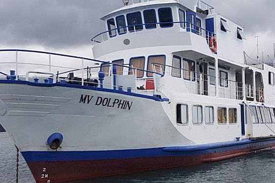Liveaboard Dolphin