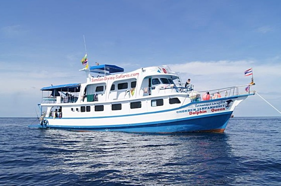Liveaboard Dolphin Queen