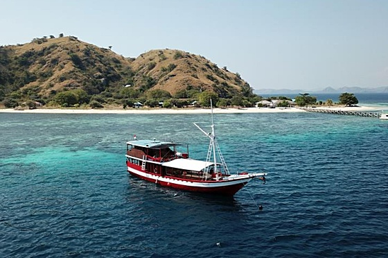 Liveaboard Indonesia Queenesia