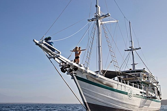 Liveaboard Indonesia Royal Fortuna