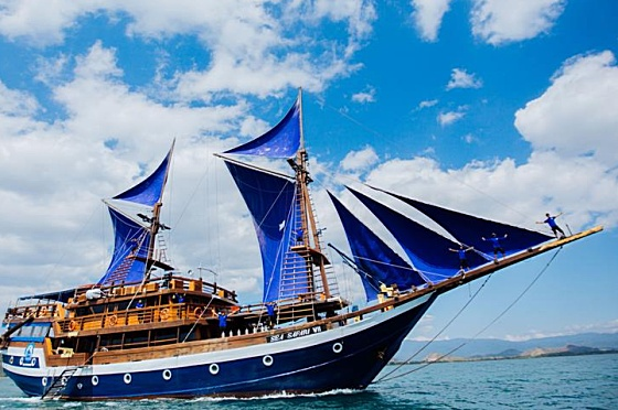 Liveaboard Indonesia Sea Safari VII