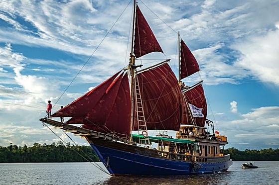 Liveaboard Indonesia Tiger Blue